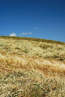 Free Hay Over The Hillside Stock Photo - 5431660