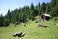 Free Alpine Meadow Stock Image - 5432241