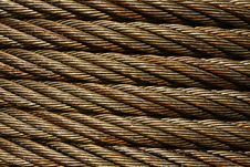 Free Bronze Wire Royalty Free Stock Images - 5433229