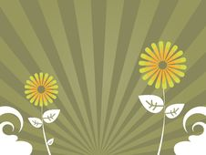 Free Brown Flower Background Stock Photos - 5433543