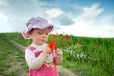 Girl With Red Poppy Royalty Free Stock Images