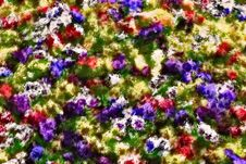 Free Flower Carpet Stock Photos - 5436933