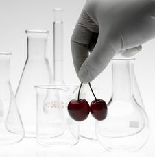 Free Biotechnology Concept Royalty Free Stock Images - 5437919
