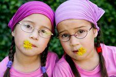 True Twins Stock Photo