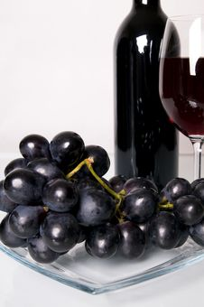 Free Vine. Royalty Free Stock Photography - 5439537