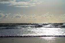 Free Shining Ocean Royalty Free Stock Photos - 54309648