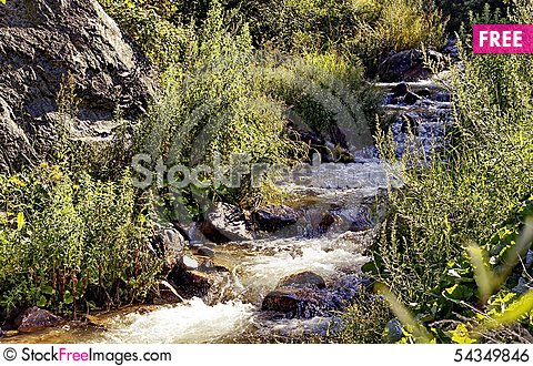 Free It Is In The Mountains Of Trans-Ili Alatau Royalty Free Stock Image - 54349846