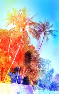 Free Retro Watercolor Palm Grove Royalty Free Stock Photo - 54371775