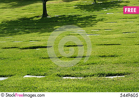 Free Shade From Tree In Cemetery Royalty Free Stock Photo - 5449605