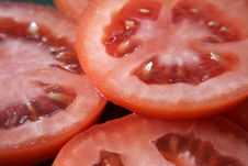 Free Tomato Royalty Free Stock Photo - 5440475