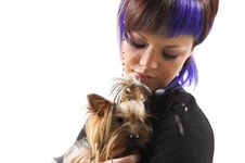 Free The Girl And Small Dog Royalty Free Stock Image - 5443296