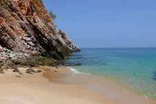 Free Wild Beach Royalty Free Stock Photo - 5444585