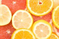 Free Fresh Citrus Fruits Royalty Free Stock Photography - 5446147