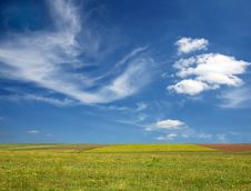 Free Green Field And Blue Sky Stock Image - 5446821