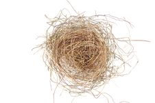 Free Empty Nest Royalty Free Stock Photo - 5447805
