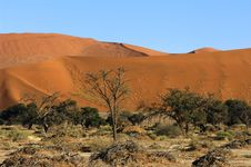 Namibia Royalty Free Stock Photo