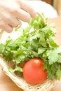 Free Fresh, Organic Ingredients Stock Images - 5452144