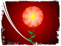 Free Circular Flower Stock Photo - 5452390