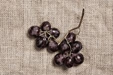 Free Bunch Of Grapes Royalty Free Stock Photography - 5450407