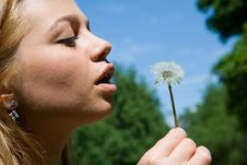 Free Girl And Dandelion Stock Image - 5450801