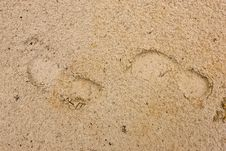 Free Footprints Stock Image - 5452091