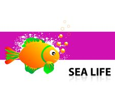 Free Sea Life Demonsration Royalty Free Stock Images - 5452399