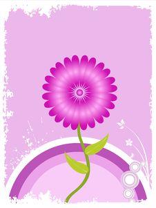 Free Flower Plant Stock Image - 5452411