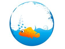Free Little Fish Stock Images - 5452434