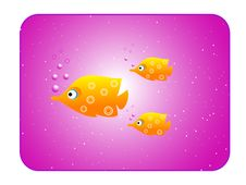 Free Yellow Fish On Purple Frame Stock Photography - 5452492