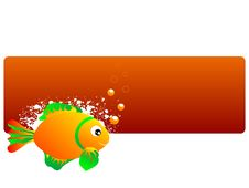 Free Fishy Concept Royalty Free Stock Image - 5452516