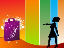 Bag And Woman Stock Images