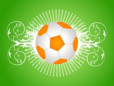 Football On Floral Stock Images