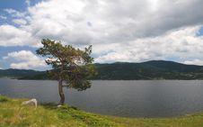 Free Lake & Sky Royalty Free Stock Images - 5454679