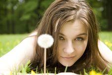 Free White Dandelion Stock Photos - 5456323