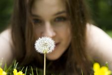 Free Dandelion Stock Image - 5456371