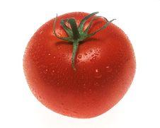 Free Tomato Royalty Free Stock Image - 5456576