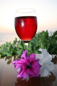 Free Red Wine Stock Image - 5456591