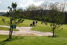 Free Golf Stock Image - 5457191