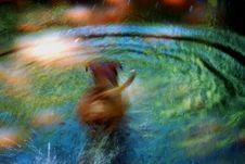 Free Psychedelic Swim Stock Photo - 5457370