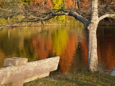 Free Peaceful Autumn Colours Royalty Free Stock Images - 5458769