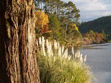 Free McLarens Falls Lake View Stock Photos - 5458813