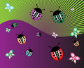Free Ladybirds And Butterflies Stock Photo - 5460200