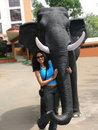 Free Posing With The Elephant Royalty Free Stock Photos - 5461618
