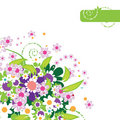 Free Beautiful Floral Frame Stock Image - 5464211