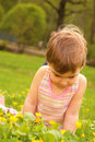 Free Little Girl Looks On Yellow Flower On Lawn Royalty Free Stock Images - 5469919