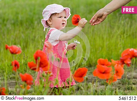 Free Baby With Poppies Stock Photography - 5461512