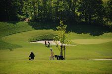 Free Golf Stock Photos - 5461003