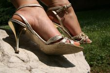 Free Silver Sandals Royalty Free Stock Photography - 5461337