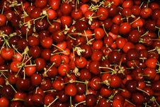 Free Sweet Cherry Royalty Free Stock Images - 5462379
