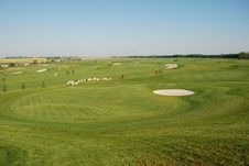 Free Golf Royalty Free Stock Photos - 5462858